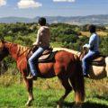 A.s.d. Ars Vivendi, Un centro de equitación que te hará sentir como en casa