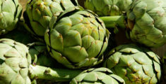 Typical products of Campania: Artichoke Festival