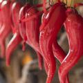 Cornicello napolitain: le cornet porte-bonheur
