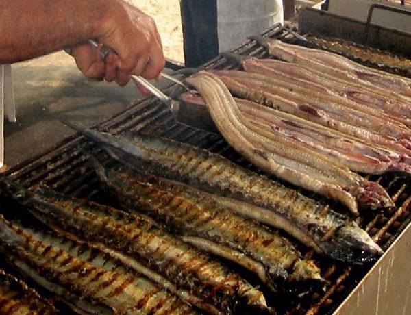 Comacchio Eel Festival