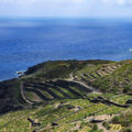 Pantelleria, The rocky pearl of the Mediterranean