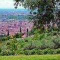 Where to eat in Veneto: why choose an agritourism