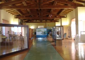 Archeological Museum Salerno