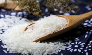 Fiera del riso 2018: l'evento più atteso del Veneto a Isola della Scala