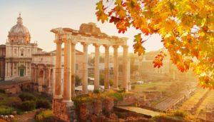 roma-foliage