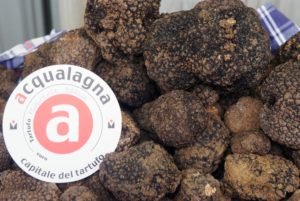 truffle-acqualagna
