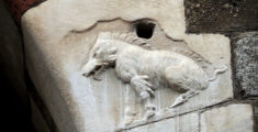 The half woollen boar: a symbol of the most secret Milan