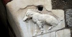 Scrofa semilanuta: ein geheimes Wahrzeichen der Stadt Mailand